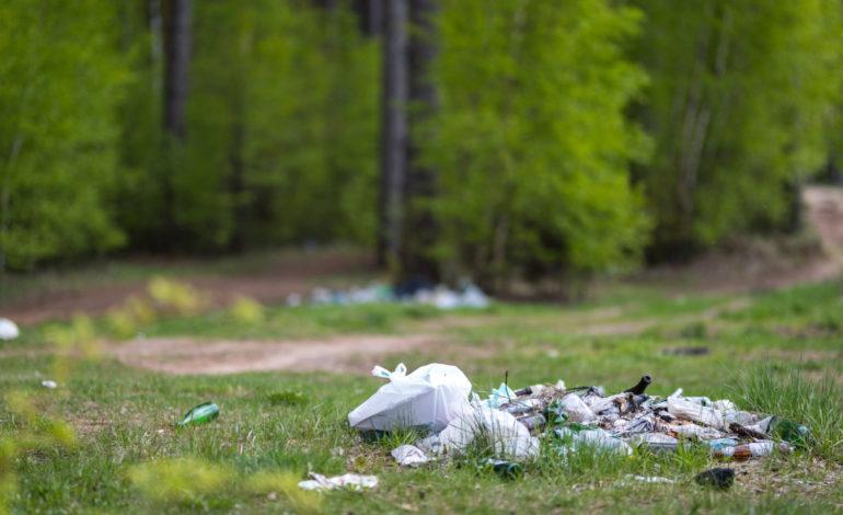 Nielegalne odpady można zgłosić elektronicznym formularzem